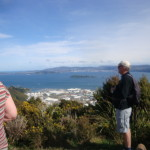 view over the Wellington Harbour