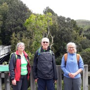 Otari and Johnsons Hill Loop – Sunday, 1 October 2017