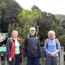 Otari and Johnsons Hill Loop – Sunday, 1 October 2017